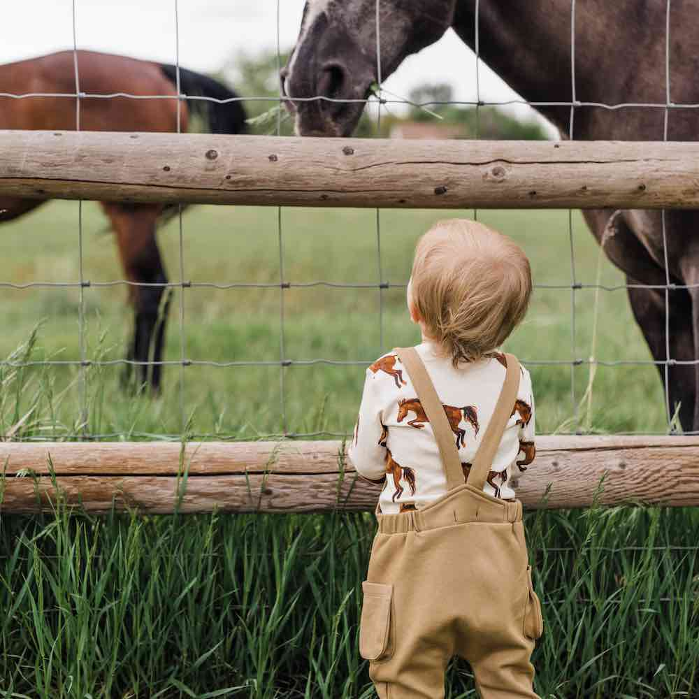 Little Baby Boy Wearing the Rust Denim Overall by Milkbarn Kids and in a Field with Horses.