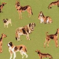 Green Dog Apparel Print by Milkbarn Kids