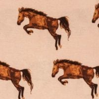 Horse Apparel Print by Milkbarn Kids